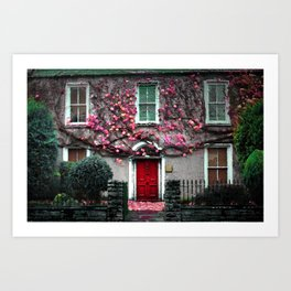 Ireland Christmas Photography Irish Home Love Flower Ivy Old Art Print