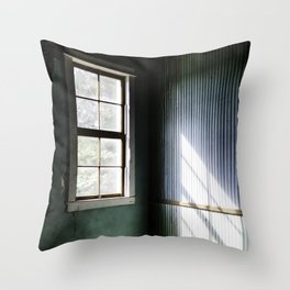 Looking for truth Throw Pillow