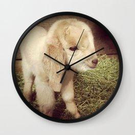 honey Wall Clock