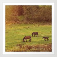 horses Art Prints featuring Horses by SensualPatterns