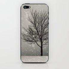 January Snow iPhone & iPod Skin