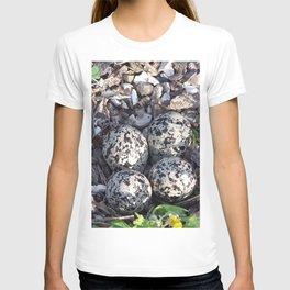 Killdeer eggs in nest T-shirt