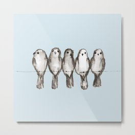 Five gray birds on a wire Metal Print