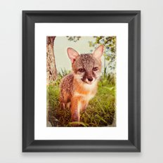 So Foxy! Framed Art Print