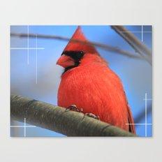 The Cardinal Portrait Canvas Print