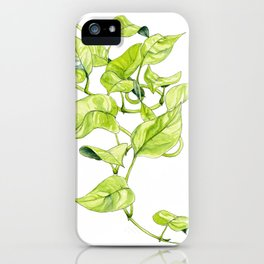 Devils Ivy Illustration iPhone Case