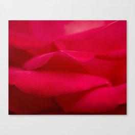 Counting Petals Canvas Print