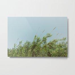 Green and Sky Metal Print