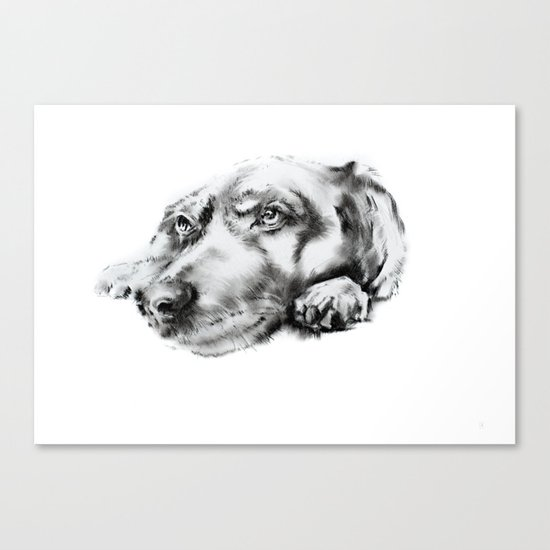 My dog Canvas Print