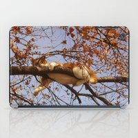 gondor iPad Cases featuring Cat on a tree by Augustinet