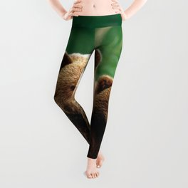 Spectecular Grizzly Bear Mother With Adorable Two Cubs In Meadow Ultra HD Leggings