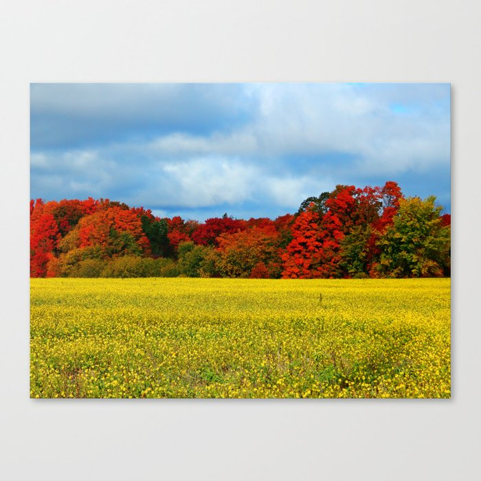 Blue Red Yellow Green and White Canvas Print