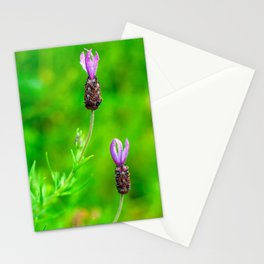 Lavender Two Flowers Stationery Cards