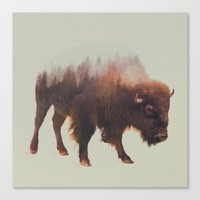 bison Canvas Prints featuring Bison by Andreas Lie