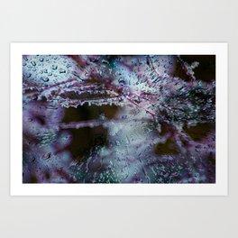 Concept frozen : Frozen nature Art Print