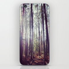 Into the Forest iPhone & iPod Skin