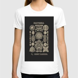 """""""Diatomea"""" from """"Art Forms of Nature"""" by Ernst Haeckel T-shirt"""