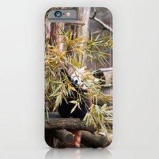 Ailurus Fulgens II Slim Case iPhone 6s