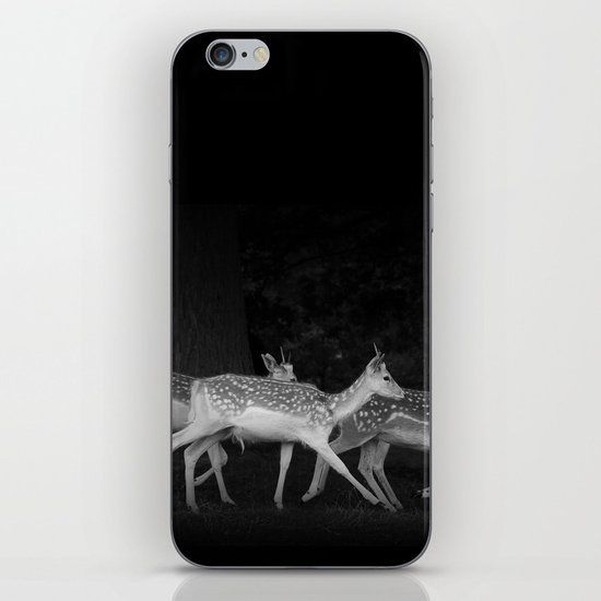 Last States Of Freedom iPhone & iPod Skin