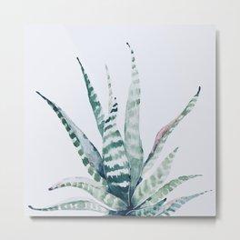 Aloe Vera Metal Print
