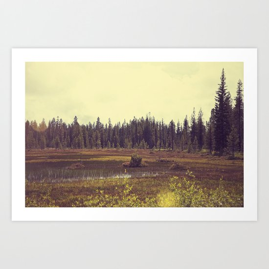 Four Mile Meadow 01 Art Print