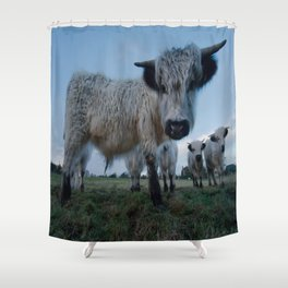 Inquisitive White High Park Cow Shower Curtain