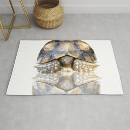 Sulcata Tortoise with Reflection Rug