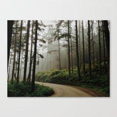 Prairie Creek Road Canvas Print