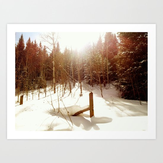 East Lake Creek, Edwards, CO Art Print