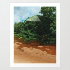 dotodc Art Print