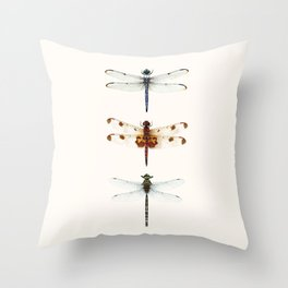 Dragonfly Collector Throw Pillow