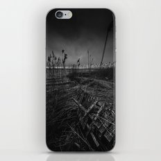On the wrong side of the lake 12 iPhone & iPod Skin