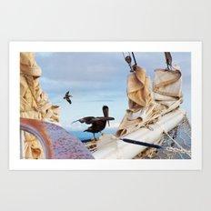 Bowsprit Pelicans Art Print