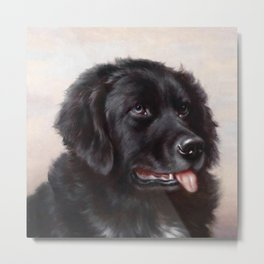 The Newfoundland Dog - Carl Reichert Metal Print