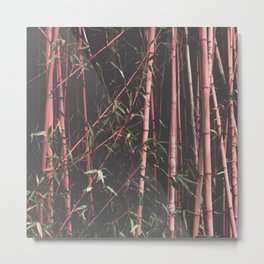bamboo pink Metal Print
