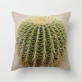 Cabo Cactus IV Throw Pillow