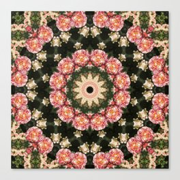 Joey Kaleidoscope Canvas Print