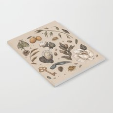 Georgia Nature Walks Notebook
