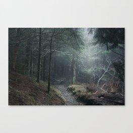 high Canvas Print