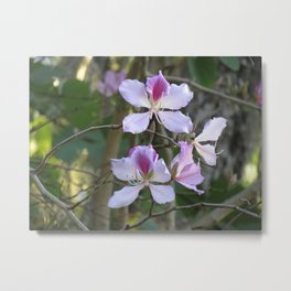 Orchid flower tree Metal Print