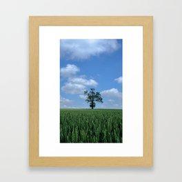 Tree in corn field Framed Art Print