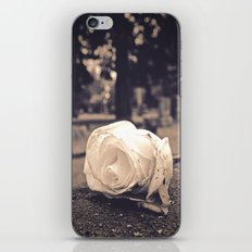 Graveyard rose iPhone & iPod Skin