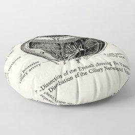 Vintage Anatomy The Human Eyeball Floor Pillow