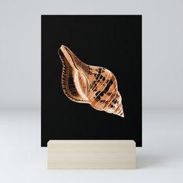 Shell nautical coastal in black background Mini Art Print