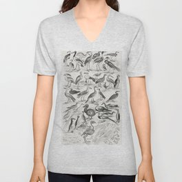 Ornithology from A history of the earth and animated nature (1820) by Oliver Goldsmith (1730-1774) Unisex V-Neck