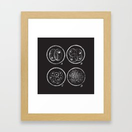 Fission (no caption!) Framed Art Print