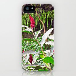Ginger and the Fern Grotto iPhone Case