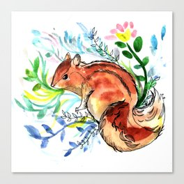 Cute Korea squirrel in sping flowers Canvas Print