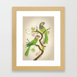 Black-capped conure Framed Art Print