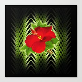 red hibiscus at midnight Canvas Print